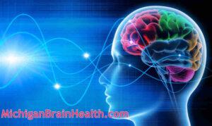 Human Brain with Brainwaves